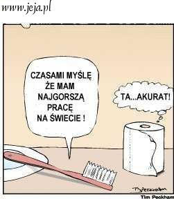 Satysfakcja W Pracy Archives Damskarzecz