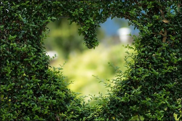 miłość poetycka